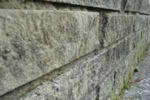 Wall by surfing-ant