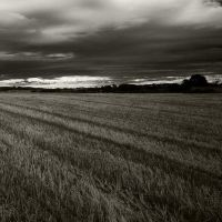 Field Of Storm by stephenrob