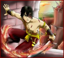 Prince Zuko of the Fire-nation by Bizmarck