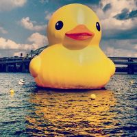 The Giant Rubber Ducky by SilentDeathAvenger