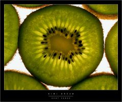 Kiwi Dream by wulfster