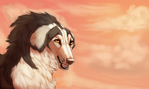 Lucian and the  setting sky by KingApollo
