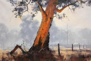 Backlit Gum by artsaus