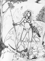 Warrior Woman Pencils by Anmph