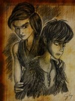A Treacherous Choice (HTTYD2 webnovel ch24) by inhonoredglory