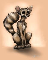 Ringtail by dsilvabarred