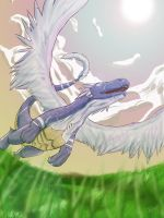 .:Swoop low, climb and soar:. by kovat