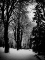 Whispering Shadows by doomed-forever