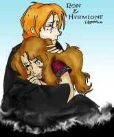 The Harry Potter Book 6 pic by rhinichi