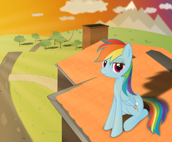 Dashie in the Sunset by Farminilla