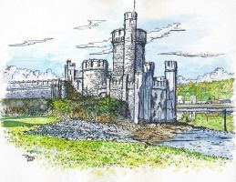 Blackrock castle by rekmac