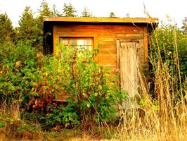 The Shack of the Century by 7IronCrosses