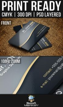 Sleek Theme Business Card by thone050