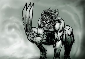 wolverine by trunkssss