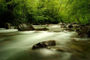 A River by LePianiste
