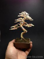 Huge 3 tone wire bonsai tree sculpture by Ken To by KenToArt