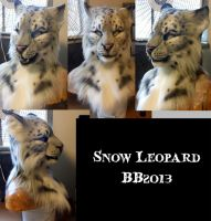 Snow Leopard Head by Magpieb0nes