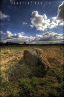 hay bale by real-creative