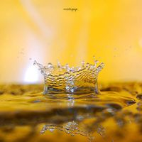 Water Drops 75 by ovidiupop