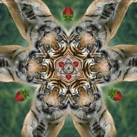 Tiger Symmetry 1 by Eolhin