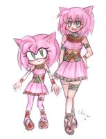 Two Amy Rose ? by Chii-su