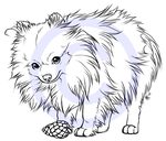 Mini the Pomeranian -tattoo design- by henu
