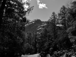 Yosemite Black and White by Pahokee-nita