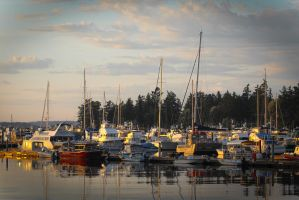 Sunset on Roche Harbor by napoland