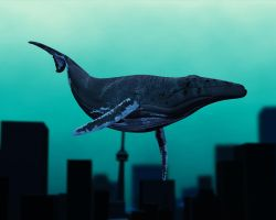 whalerENDER by Facial-Tic