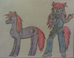 Spirit Blaze - Pony and Mobian Forms by A5L