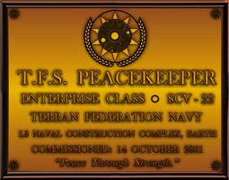 TFS Peacekeeper Dedication Plaque by viperaviator