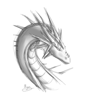 Dragoness sketchy by H-brid