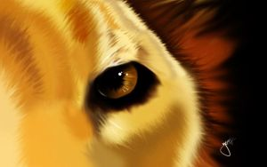 I have my eyes on you.. by yemzee