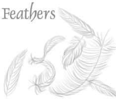 Feathers by chibibrushes