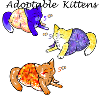 NEW kitten point adoptables :) by SoulCats