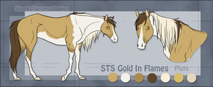 STS Mare- Pluta by ShockTherapyStables