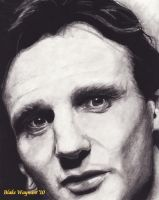 Liam Neeson by DarkCalamity