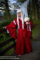 Inuyasha 4 by Headclouds