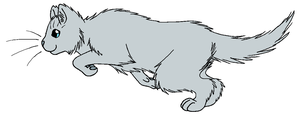ThunderClan - Dovewing by WildpathOfShadowClan