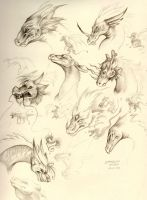 Dragon Head Study by HanMonster