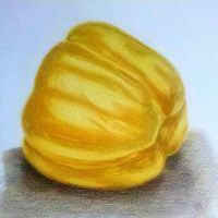 Yellow bell pepper study with color pencils by I-rE-nA-216