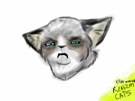Realism cats:. Grumpy Cat Tard by XFire-and-IceX