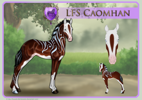 LFS Caomhan 153 - Foal Reference by SweetLittleVampire