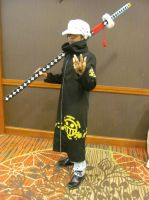 Animefest '13 - One Piece 1 by TexConChaser