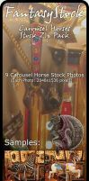 Carousel Horse Stock Zip Pack by FantasyStock