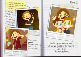 Castiel's Diary, The Winchester  brothers by M0nzteer