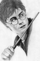 Harry Potter portrait by Danilita