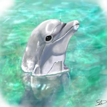 Dolphin by QwertyNerd