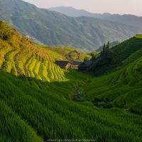 China - Terraces by lux69aeterna