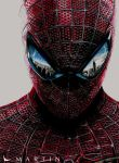 .: The Amazing Spiderman ~ Color drawing :. by Martin--Art